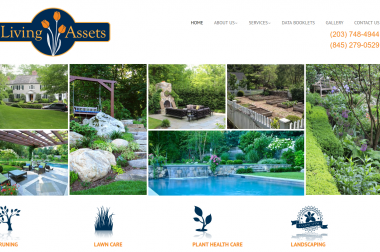 Living Assets – tree service and landscaping